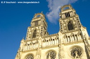 OrleansCathedrale004