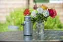 Bars - Restaurants